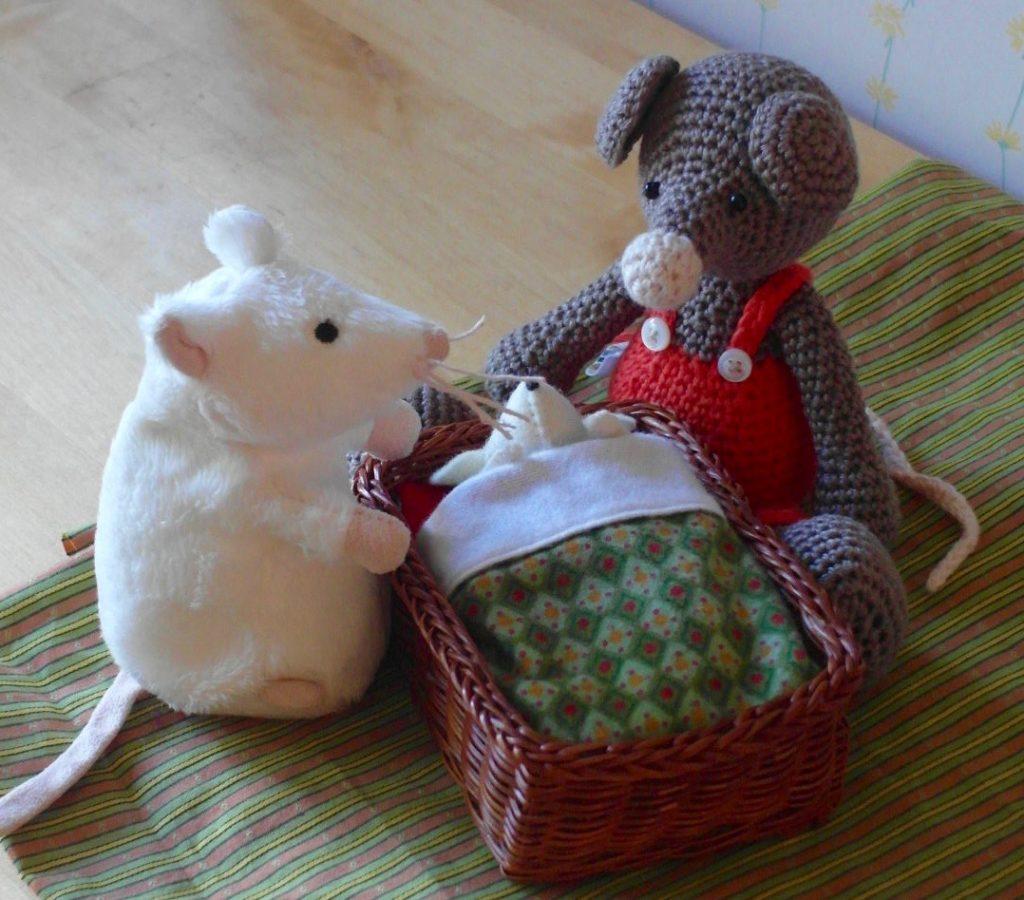 verschil tussen rat en muis